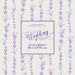 Wedding invitation with blossom lavender. Bridal shower card with gray background. Vintage floral invitation for spring or summer bridal shower. Vector illustration.