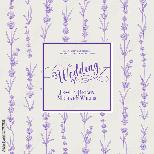 Wedding invitation with blossom lavender. Bridal shower card with gray background. Vintage floral invitation for spring or summer bridal shower. Vector illustration. - 247717933