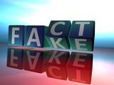 Fake or Fact - 247736947
