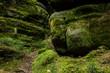 Leinwanddruck Bild - Felsen am Fusse der Schrammsteine, Nationalpark Saechsische Schweiz, Elbsandsteingebirge, Sachsen, Deutschland
