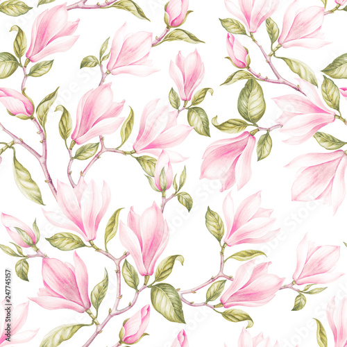 Seamless pattern of magnoliaVintage bouquet of blooming roses. Watercolor botanical illustration of a spring flowers. Postcard for congratulations, wedding or invitation. Textile design of flowers. - 247745157