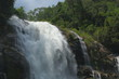 waterfall in nature forest, beautiful landscape - 247760931