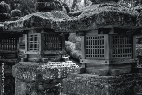 Wooden lanterns on stone pillars covered by moss in Nara Japan © KaterinaZizlavska