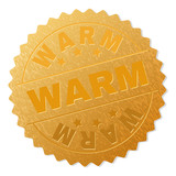 WARM gold stamp seal. Vector golden award with WARM text. Text labels are placed between parallel lines and on circle. Golden skin has metallic texture.