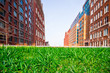 Green grass lawn with city apartment buildings in the background