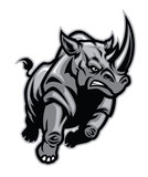charging angry rhino attacking - 247894597