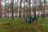 altes Fahrrad im Wald - 247940574