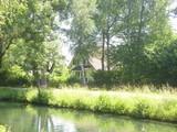 C'è una casa nel bosco - 247948537