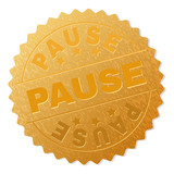 PAUSE gold stamp reward. Vector golden award with PAUSE caption. Text labels are placed between parallel lines and on circle. Golden surface has metallic effect.
