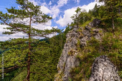 View over the mountains, Reichraminger Hintergebirge, Grösstenberg, Hochschlacht, Kalkalpen, Austria