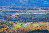 Village houses, autumn forest with colorful fall trees and and mountain green meadows, Slovenia - 247960586