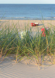Dünengras und Strand