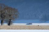 Beilngries im Winter - 247977367