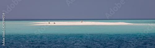 Desert sandy island - 247994754