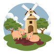 Pigs in the farm scene. Concept for animal farm. Flat vector illustration - 247996759