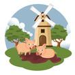 Pigs in the farm scene. Concept for animal farm. Flat vector illustration - 247996759