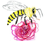 Cute bee art