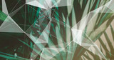 Palm Leaves. Geometric Abstract design. Polygonal tropical background. - 248034155
