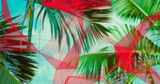 Palm Leaves. Geometric Abstract design. Polygonal tropical background. - 248034500