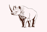 Graphical rhino,vintage doodle illustration,vector sketch