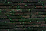Old wall brick with moss vintage background. - 248086355