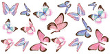 beautiful pink butterflies, isolated  on a white - 248087156