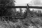 An old drawbridge in dutch nature in black and white - 248134596