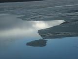 Fi'e couche de glace sur surface d'eau / thin ice on a calm water surface