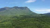Drone going up in a aerial high angle view over an beautiful rainforest mountains at Estrada Da Graciosa and Serra Marumbi, Brazil - 248255953