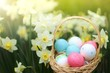 Easter holiday.Easter eggs in a basket in daffodil flowers in the sun on a blurry floral background.Spring Easter festive background.