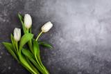 Piękne białe tulipany kwiaty na wakacje.