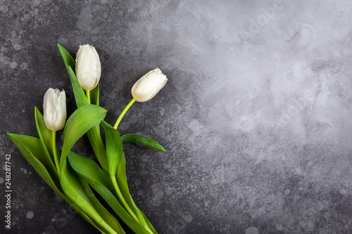 Leinwanddruck Bild Beautiful white tulips flowers for holiday.