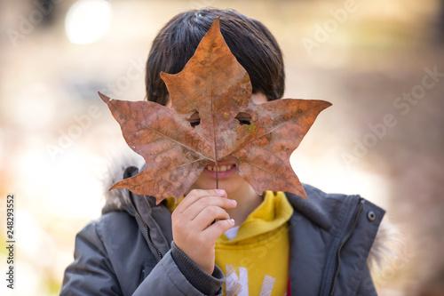 Boy playing with a leaf - 248293552