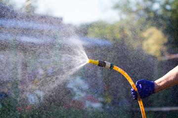 Watering plants in a garden of hose © Alexey Kartsev