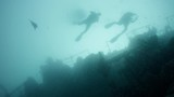 A group of divers swim in the murky water at a wreck, GAN, Maldives, Indian Ocean - 248370325