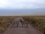 Zebra crossing - 248374507