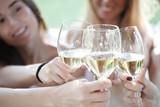 Happy friends toasting wine - 248378523