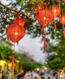 Amazing evening view of green tree decorated with red lanterns - 248407185