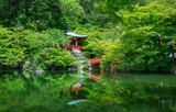 pond view in Daigo ji temple, Kyoto