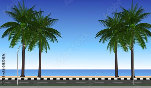 palm trees on the beach - 248506356