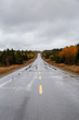 Scenic road during a cloudy day in the Fall Season. Taken in Northern Newfoundland, Canada.