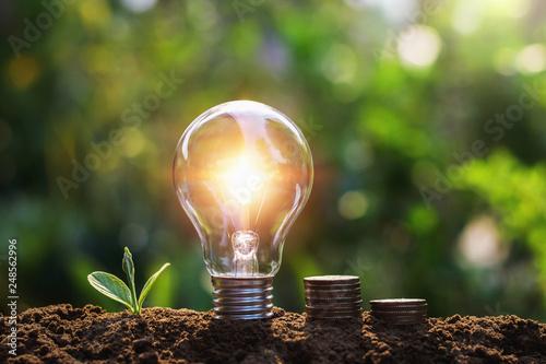 Leinwandbild Motiv light bulb with coins and young plant. saving concept