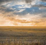 autumn fields - 248574551