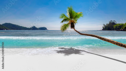 Fototapeten Strand Coco palm over paradise beach, white sand and turquoise sea. Summer vacation and background concept.