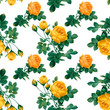Floral patterned background - 248585797