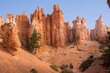 landscape on the bryce canyon in the united states of america - 248615779