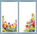 Set cards with arrangement from multicolor spring flowers