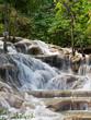 Dunn's River Falls - 248621163
