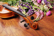 Violin and lupine flowers.