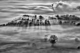 Foresta con nebbia all'alba, Italia - 248624932
